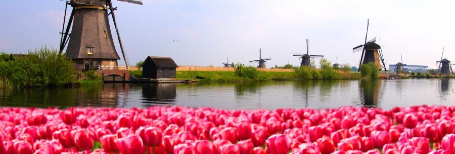 VAT Netherlands