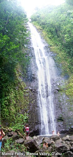 Dans Hiking Pages Manoa Falls