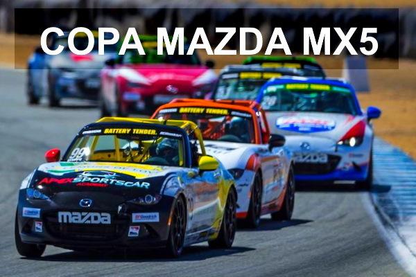 Campeonato Assetto Corsa PS4 Mazda Cup MX5