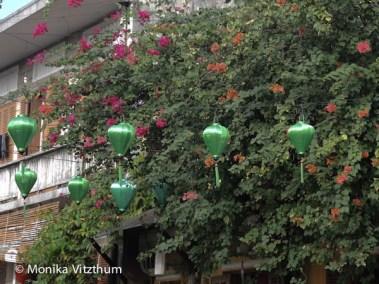Vietnam_2020_Hoi_An-6556