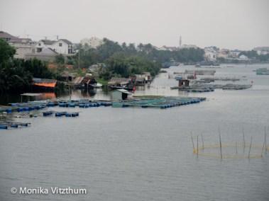 Vietnam_2020_Hoi_An-6703
