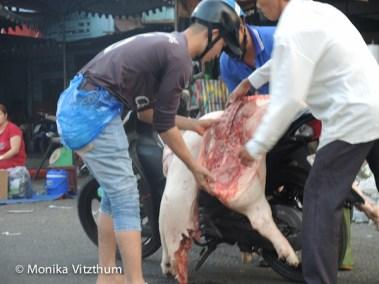 Vietnam_2020_Mekongdelta_2020-6013