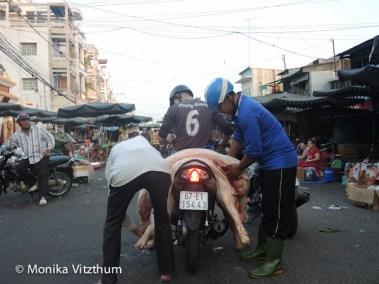 Vietnam_2020_Mekongdelta_2020-6015