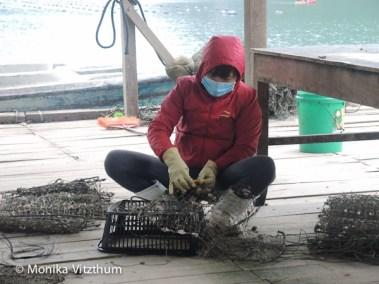 Vietnam_2020_Halong_Bay-8310