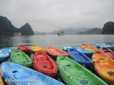 Vietnam_2020_Halong_Bay-8336