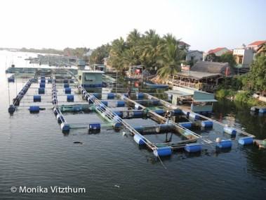 Vietnam_2020_Lady_Buddha-6852