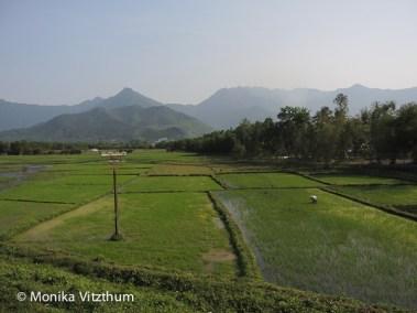 Vietnam_2020_Wolkenpass_Hue_Kaiserpalast-7438