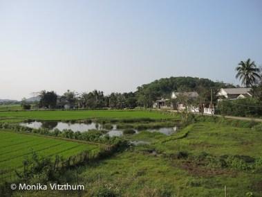 Vietnam_2020_Wolkenpass_Hue_Kaiserpalast-7443