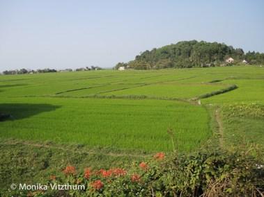 Vietnam_2020_Wolkenpass_Hue_Kaiserpalast-7446