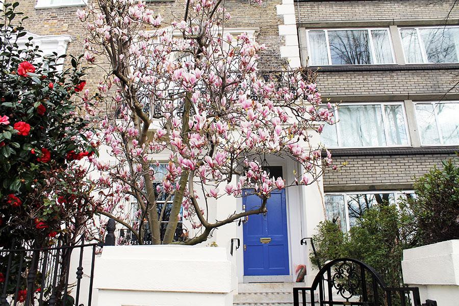 5 Notting Hill
