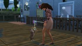 Regenboog kattenbegoochelaar