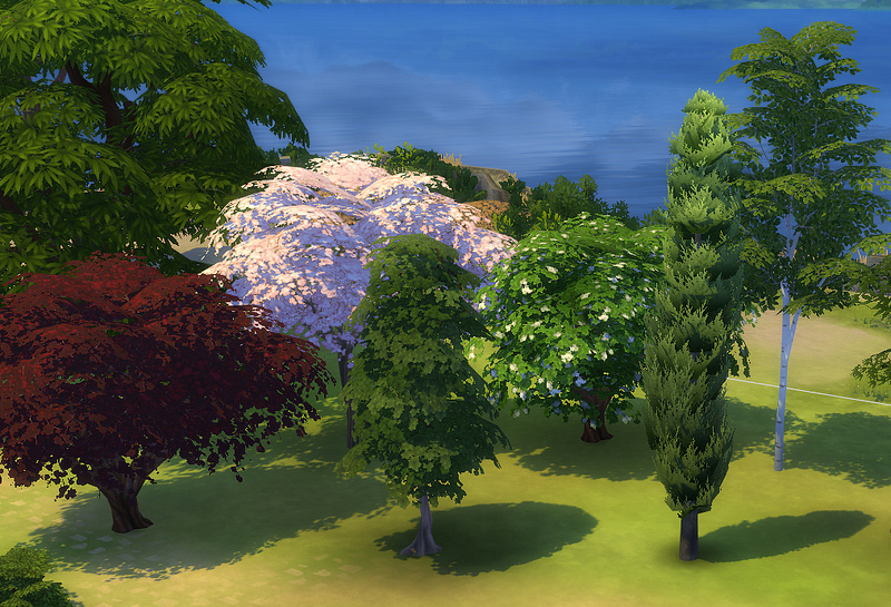 Download  Get Together Plants Liberated by porphyriasims  SimsWorld