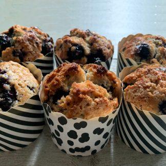 Blueberry choco muffin