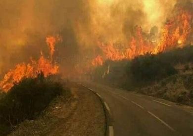 حرارة قياسية في تونس وحرائق تندلع في الغابات غرب البلاد