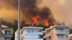 حرائق الغابات مازالت مستعرة في تركيا لليوم العاشر