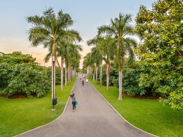 personas corriendo por el jardin botanico culiacan