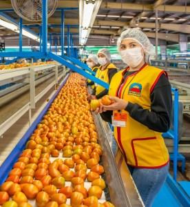 Chica con uniforme de la empresa, mostrando unos tomates