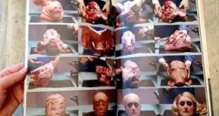 Fotos: Transforman un cerdo en la cara de Paris Hilton