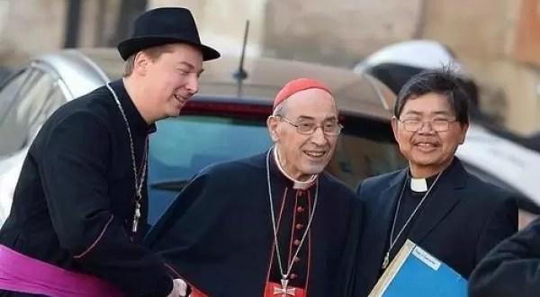 Obispo falso se coló en el Vaticano - Fotos