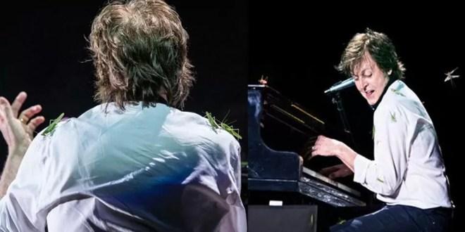 Fotos: Langostas atacan a Paul McCartney en Brasil