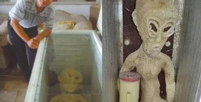 Hallazgo insólito: un extraterrestre con dos penes - Fotos