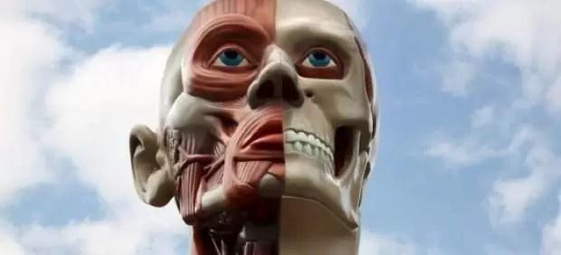 Parálisis facial: nueva técnica permite recuperar la sonrisa