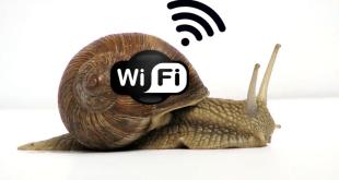 ¿Conexión lenta? Soluciona los problemas más comunes
