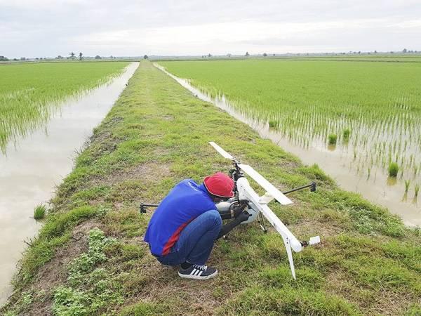 PELATIH Aviator Training Programme (ATP) mengendalikan teknologi dron untuk perkhidmatan penyemburan tanaman padi bermula hujung bulan ini.