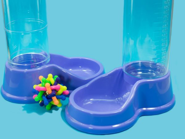 Pet accessories concept.  Water and food feeder with rubber on blue background.