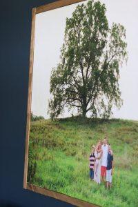 DIY Large Photo Canvas - Sincerely, Sara D.