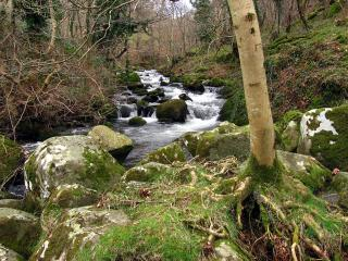 Nature reserve in Wales