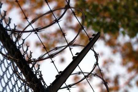 Razor wire and leaves