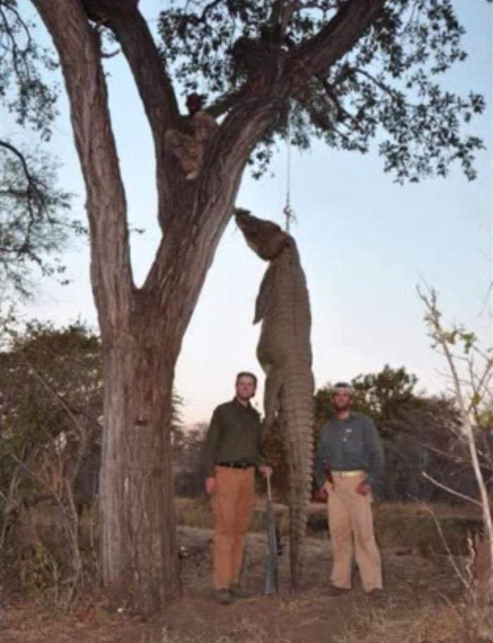 Los hermanos Donald Jr. y Eric Trump durante un viaje de 2011 a Zimbabwe donde cazaron a varios animales de la vida silvestre. Foto: YouTube.