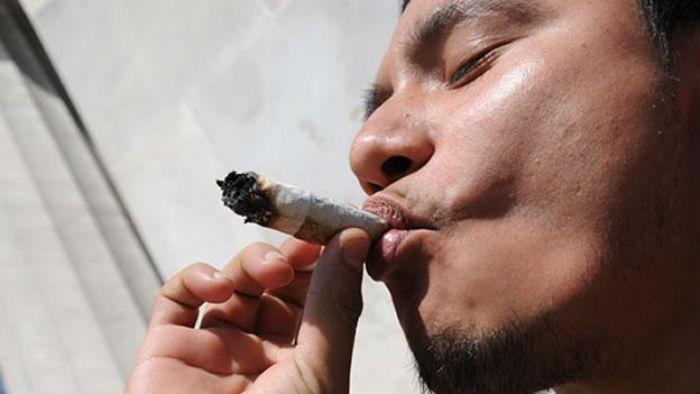 En el país, según la Encuesta Nacional de Adicciones 2011 en lo que se refiere a drogas ilícitas, la mariguana sigue siendo la de mayor consumo con un porcentaje de 80 por ciento del total de drogas. Foto: Cuartoscuro