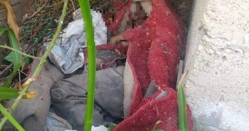 hermano enterrado - Trío de hermanos, en estado de ebriedad, matan y entierran a su padre en lote de Valle de Bravo
