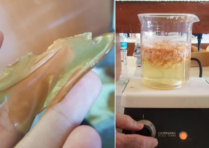 Los desechos de camarón pasan por un proceso químico del que se obtienen las sustancias para formar bio plástico. Fotos: Cortesía