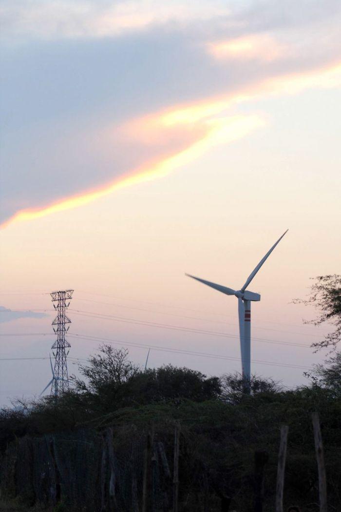 """En el Istmo de Tehuantepec existen condiciones para generar 33 mil mega watts de electricidad en el parque eólico """"La Venta""""."""