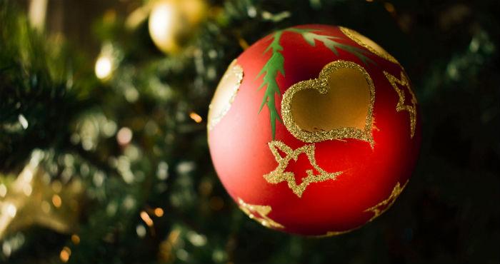 """""""Las fechas navideñas en las que más pavos se matan, en México se matan alrededor de 3.2 millones de pavos para las cenas de Navidad""""."""