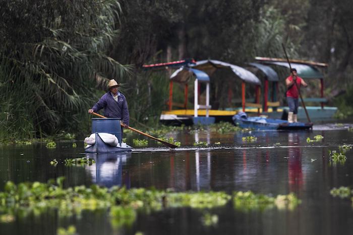 """Un agricultor utiliza un palo para mover su canoa por su granja flotante, conocida como """"chinampa"""", en Xochimilco, en la Ciudad de México, el 12 de agosto de 2021, mientras la capital mexicana se prepara para conmemorar el 500 aniversario de la caída de la capital azteca, Tenochtitlan. Los canales y jardines flotantes de Xochimilco son los últimos remanentes de un vasto sistema de transporte de agua construido por los aztecas para abastecer su capital."""