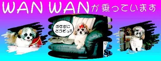 yuki_p