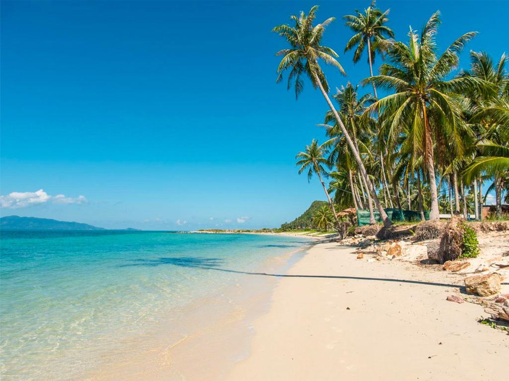 蘇梅島自由行套票 | 新航假期