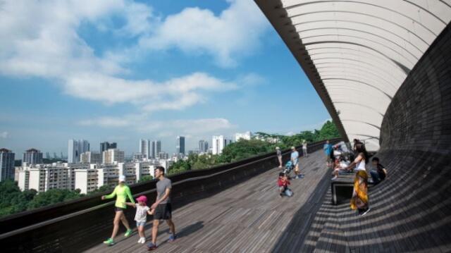Henderson-Waves-Bridge-Singapore