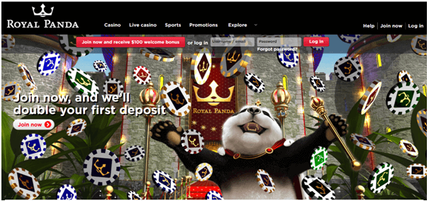 Royal Panda Bonus Offers