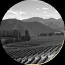 Wine Vault App