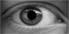 Eye of a beautiful Paris woman