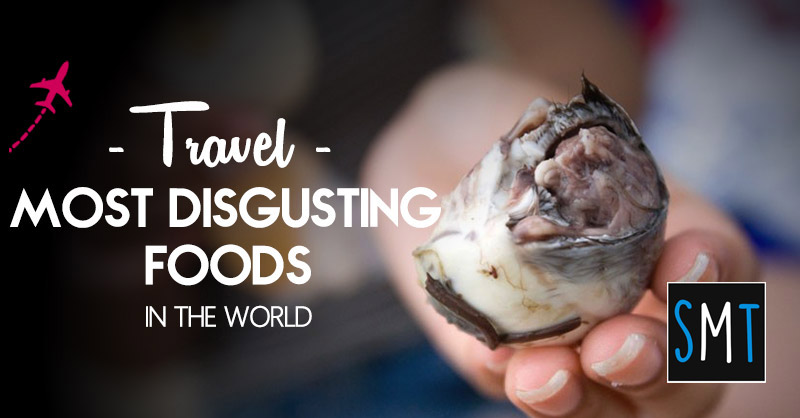 most disgusting foods in the world