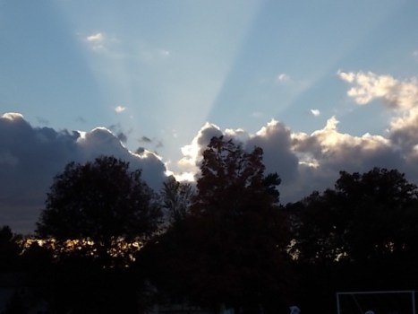 My Image of Peace Sun through the silhouette of trees