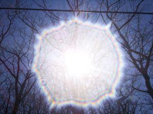Heaven - Sunburst throughout the trees