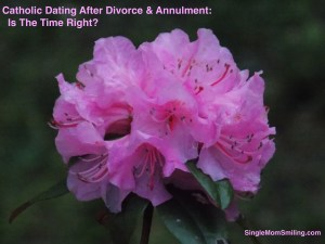 Pink Grouped Flower - Catholic Dating Divorce Annulment Time Right?