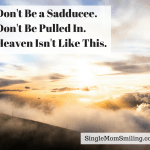 Don't be a Sadducee. Don't Get Pulled in. Heaven isn't Like This.